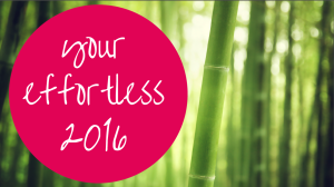 Your Effortless 2016 | 2016 Business Plan