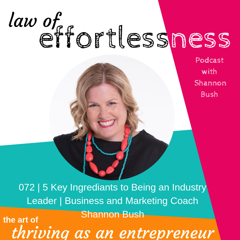 Marketing Business Coach Shannon Bush Being Industry Leader Law of Effortlessness Podcast Perth